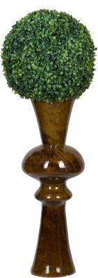 Evergreen Artificial Plant