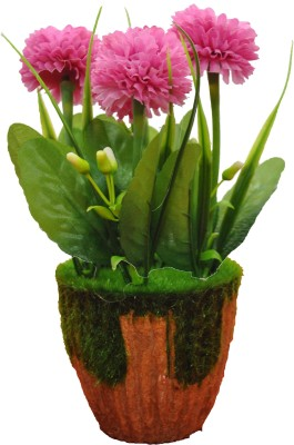 ANANDS Bonsai Artificial Plant with Pot