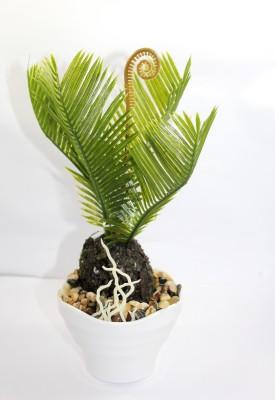 Aryash Highbrow Creation Bonsai Artificial Plant  with Pot