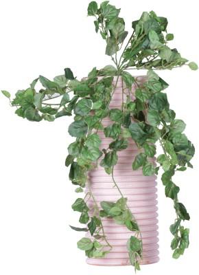 Evergreen Wild Artificial Plant