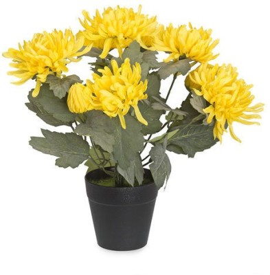 @home Chrysanthemum Artificial Plant  with Pot