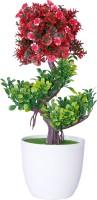 Oyedeal Bonsai Wild Artificial Plant  with Pot(29 cm, Multicolor)