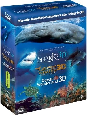 Sharks / Dolphins And Whales / Ocean Wonderland - 3D