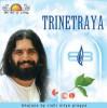 The Art Of Living: Trinetraya...