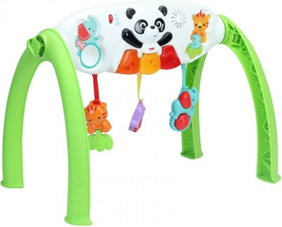 Fisher-Price Grow with Me Standing Gym