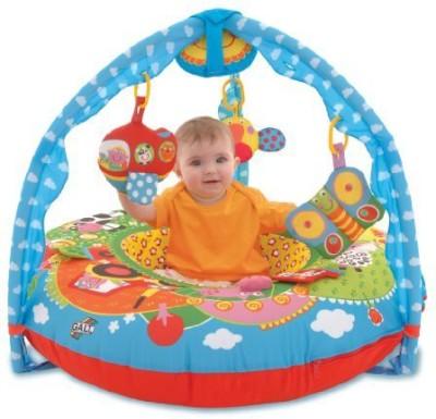 Galt Toys Inc First Years Farm Playnest and Gym Rattle