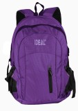 Ideal Shield 25 L Laptop Backpack (Purpl...