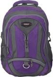 Somada Somada 4122 26 L Laptop Backpack ...