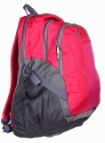 TLC Cerium 35 L Free Size Backpack (Pink...