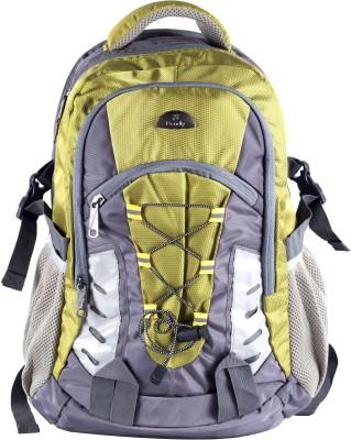 Bendly SP3 Multi 30 L Laptop Backpack