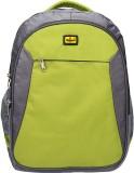 Elegant BP07 3 L Backpack (Grey, Green)