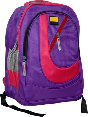 dazzler d17 20 L Laptop Backpack