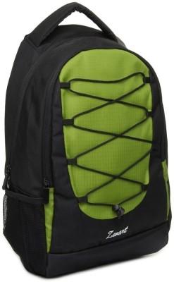 Zwart 214101 25 L Free Size Laptop Backpack