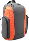 Fastrack Backpack (Grey)