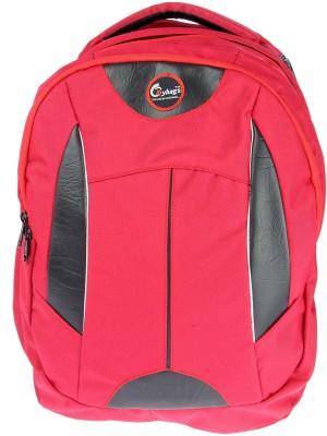 JG Shoppe M60 20 L Backpack