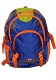 sammerry Stylish 20 L Backpack (Blue)