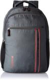 Safari CONNECT 25 L Laptop Backpack (Gre...