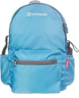 Harissons Plush 20 L Backpack(Blue) best price on Flipkart @ Rs. 699