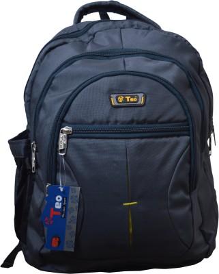 Teo T968DG 15 L Backpack