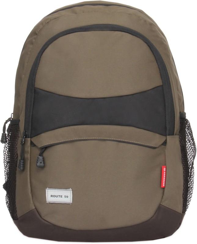 Harissons O3 18 L Laptop Backpack(Grey) best price on Flipkart @ Rs. 719