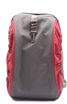 Fidato Mojo 5 L Backpack