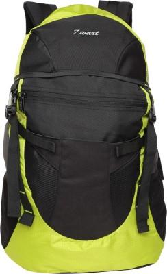 Zwart CLINROV 32 L Medium Backpack(Grey)