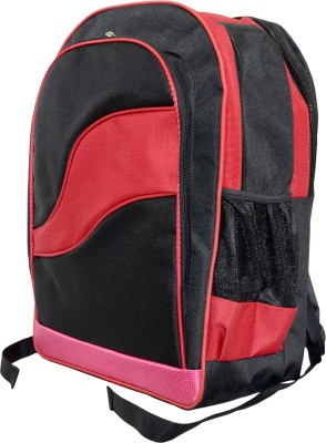 dazzler d21 20 L Laptop Backpack