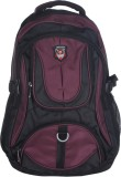Adking Standard 30 L Backpack (Maroon, B...