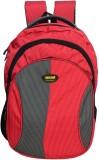 Newera Amaze 1Yr Warranted 40 L Backpack...