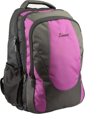 Zwart ANDANOR-LP 25 L Backpack