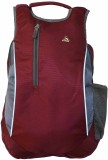 Clubb College 5 L Medium Backpack (Maroo...