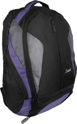 Zwart 114106 25 L Free Size Backpack(Purple)