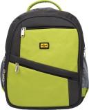 Elegant BP14 3 L Backpack (Green)
