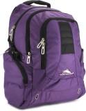 High Sierra Incline Laptop Backpack (Pur...