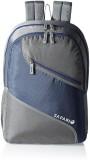 Safari Swing 25 L Backpack (Grey, Blue)