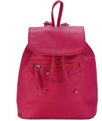 The Zoya Life Jack 2 L Backpack