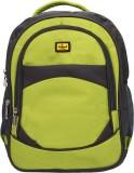 Elegant BP11 3 L Backpack (Grey, Green)