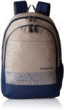 Aristocrat Pep 2 22 L Backpack (Grey)