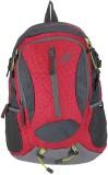 Novex Amor 30 L Medium Backpack (Red)