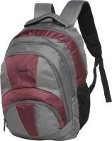 Zwart 114105 25 L Free Size Backpack(Grey, Purple)