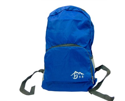 AVIKZ Deep Blue 20 L Backpack