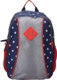 President Junior 17 L Backpack (Grey)