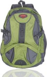 Adking Standard 25 L Backpack (Green)