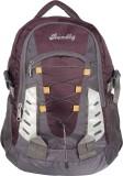 Bendly SP3 Multi 30 L Laptop Backpack (M...