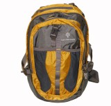 Adraxx Landscape 28 L Medium Backpack (G...