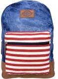 Dickies The Hudson 21 L Medium Backpack ...