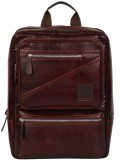 Tortoise Leather 24 L Backpack (Brown)