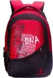 Istorm Telecom 25 L Free Size Backpack (...