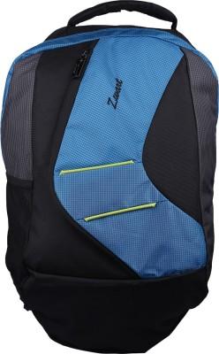 Zwart VEZIK 20 L Medium Backpack