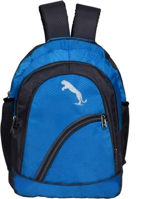 Hanu MNBG17BLU 20 L Laptop Backpack